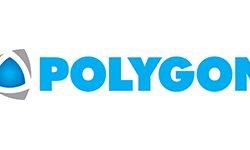 Logo Polygon